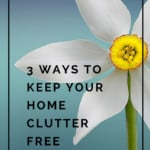 In order to have an organized home, you have to kick clutter to the curb. Here are three tried and true methods to de-clutter your home and get rid of clutter easily!