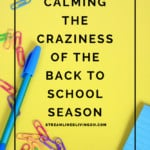 Calming the craziness of the back to school season. The best tips for staying organized through a challenging time.